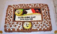 Cane Corso Day 2010